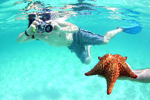 The-starfish-in-the-Piscina-Natural