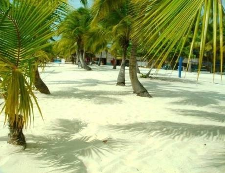 Great-beach-on-our-Saona-Tour